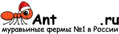 Муравьиные фермы AntFarms.ru - Томск